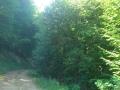 Biciklisticka-ruta-Jankovac-Radar-002
