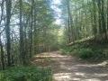 Biciklisticka-ruta-Jankovac-Radar-005