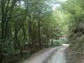Biciklisticka-ruta-Jankovac-Pusina-Jarcoder-002