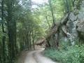 Biciklisticka-ruta-Jankovac-Pusina-Jarcoder-005