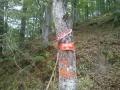 Biciklisticka-ruta-Jankovac-Pusina-Jarcoder-009