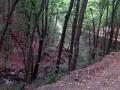 Biciklisticka-ruta-Jankovac-Pusina-Jarcoder-010