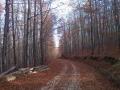 biciklisticka-ruta-kutjevo-004