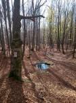 Biciklistička ruta: Drenovac – Ivačka Glava – Orahove Vode – Mališćak – Velika – Jankovac.